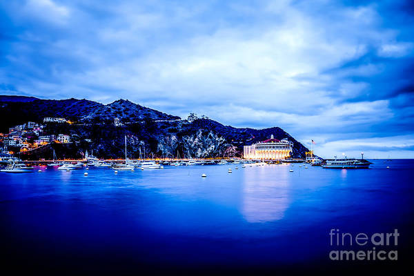 Wall Art - Photograph - Catalina Island Avalon Bay At Night Picture by Paul Velgos