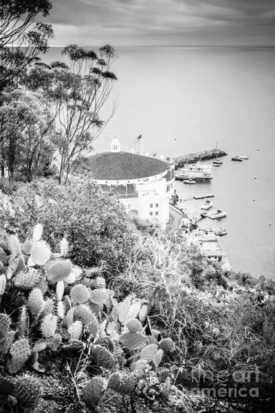 Wall Art - Photograph - Catalina Island Avalon Casino Black And White Picture by Paul Velgos