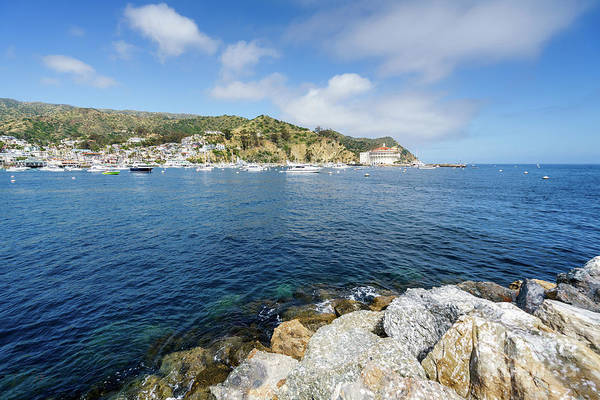 Wall Art - Photograph - Catalina Island Avalon Harbor Photo by Paul Velgos