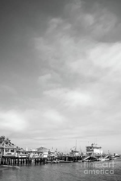 Wall Art - Photograph - Catalina Island Avalon Pier Black And White Photo by Paul Velgos