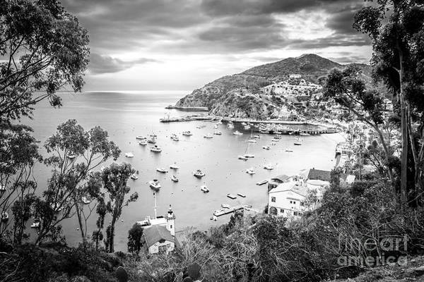 Avalon Wall Art - Photograph - Catalina Island California Black And White Photography by Paul Velgos