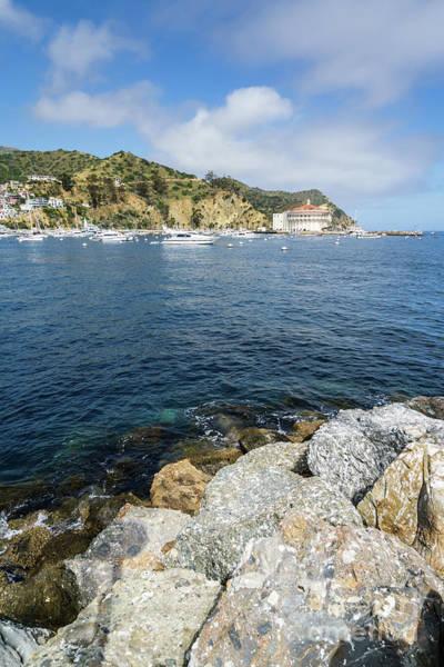 Wall Art - Photograph - Catalina Island Casino And Avalon Harbor Photo by Paul Velgos