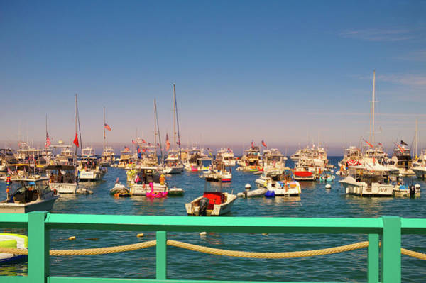 Wall Art - Photograph - Catalina Island Harbor by Art Spectrum