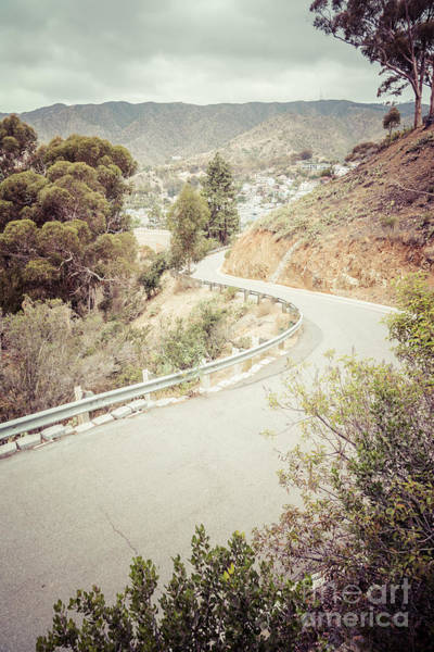 Wall Art - Photograph - Catalina Island Mountain Road Picture by Paul Velgos