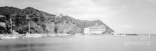 Avalon Wall Art - Photograph - Catalina Island Panorama In Black And White  by Paul Velgos