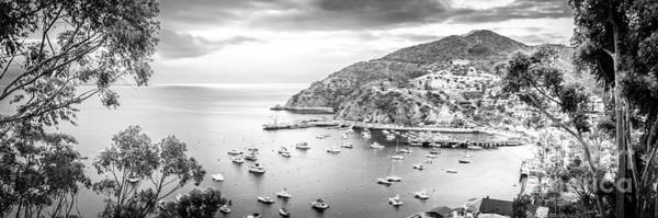 Avalon Wall Art - Photograph - Catalina Island Panoramic Black And White Photo by Paul Velgos