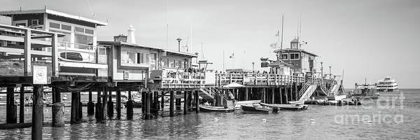 Wall Art - Photograph - Catalina Island Pier Black And White Panoramic Photo by Paul Velgos
