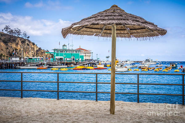 Avalon Wall Art - Photograph - Catalina Island Straw Umbrella Picture by Paul Velgos