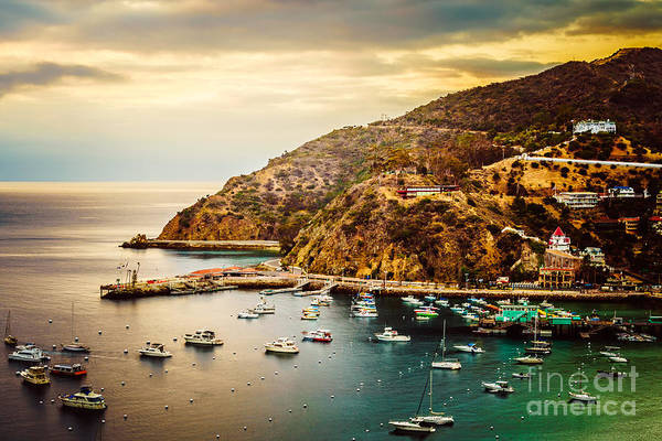 Avalon Wall Art - Photograph - Catalina Island Sunrise Picture by Paul Velgos