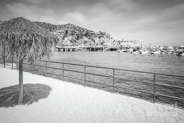 Wall Art - Photograph - Catalina Island Tiki Umbrella Black And White Photo by Paul Velgos