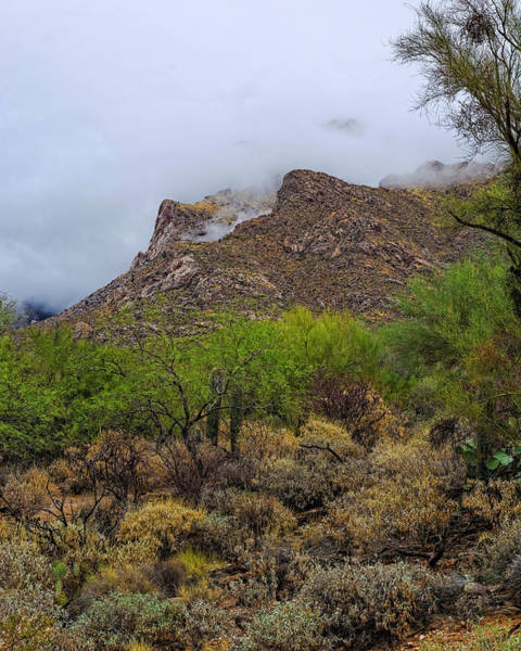 Photograph - Catalinas In Clouds V1830 by Mark Myhaver