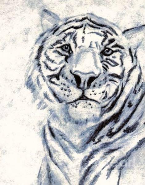 White Tiger Drawing - Catatonic by Vicki Lynn Sodora