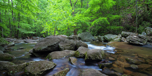 Art Print featuring the photograph Catawba Stream And Rocks Panorama by Ranjay Mitra