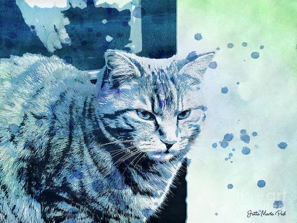 Digital Art - Catbird Seat by Jutta Maria Pusl