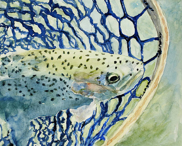 Trout Watercolor Wall Art - Painting - Catch And Release by Mary Benke