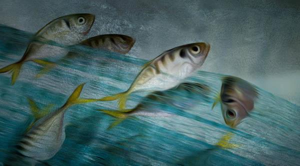 Sportsman Digital Art - Catch Of Fish By Net - Ocean Fishing by Jean-Pierre Prieur