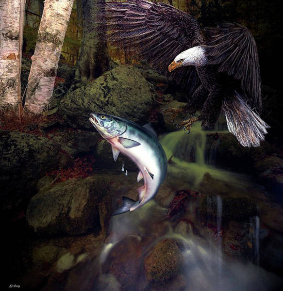 Stream Mixed Media - Catch Of The Day by G Berry