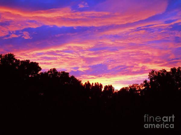 Photograph - Catching Fire by D Hackett
