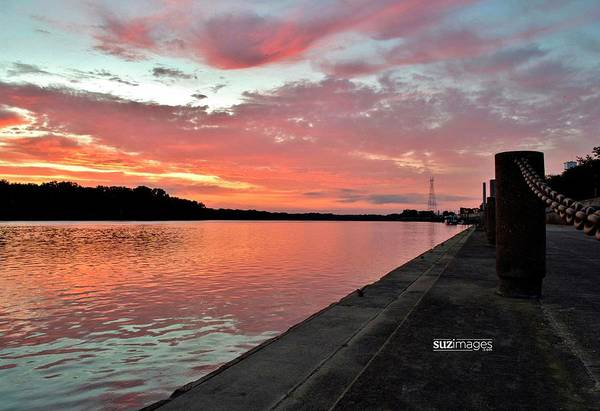 Photograph - Catching Sunrises by Susie Loechler