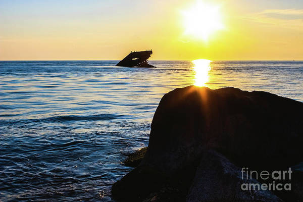 Wall Art - Photograph - Catching The Sun by Colleen Kammerer