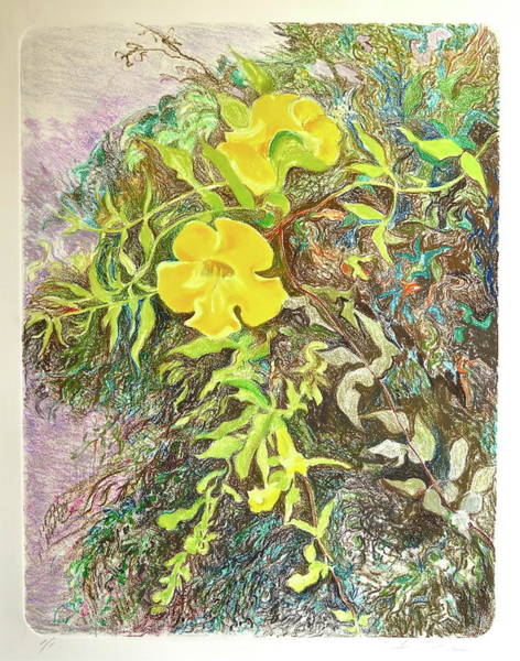 Wall Art - Mixed Media - Catclaw Vine by Bonnie See