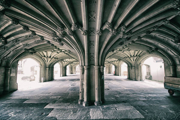 Gothic Arch Photograph - Cathedral Arches by Martin Newman