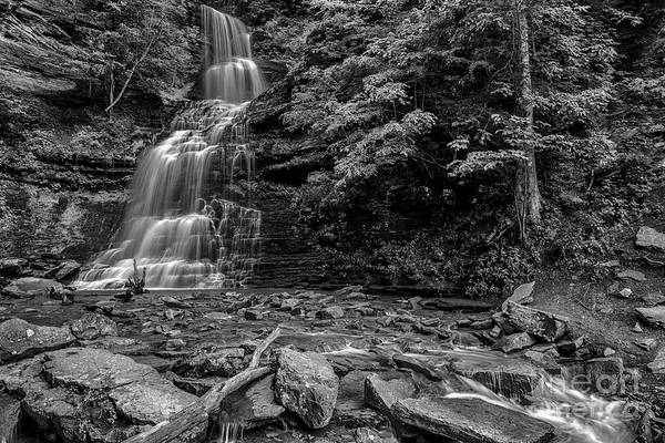 Photograph - Cathedral Falls Black And White by Thomas R Fletcher