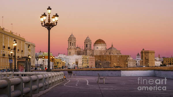 Photograph - Cathedral From Southern Field Cadiz Spain by Pablo Avanzini
