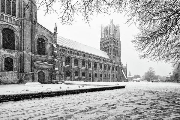 Photograph - Cathedral Green Snow by James Billings