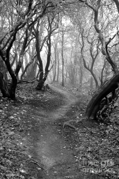 Cathedral Hills Serenity In Black And White Art Print