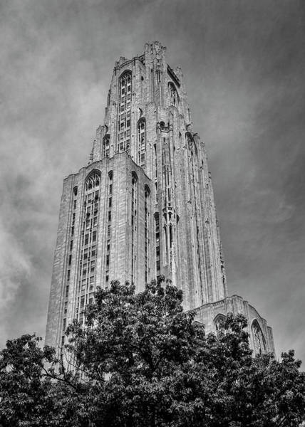 Wall Art - Photograph - Cathedral Of Knowledge - #2 by Stephen Stookey