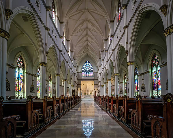 Photograph - Cathedral Of St. John The Baptist by Van Sutherland