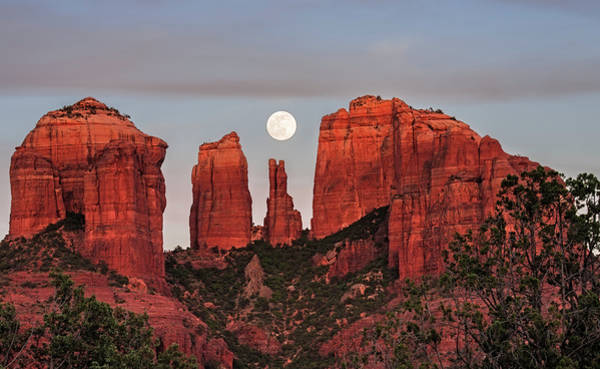 Photograph - Cathedral Of The Moon by Loree Johnson