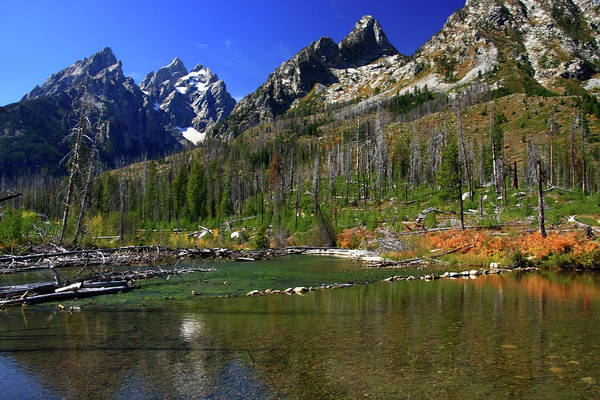 Photograph - Cathedral Peaks, Grand Tetons National Park, Wyoming by Aidan Moran