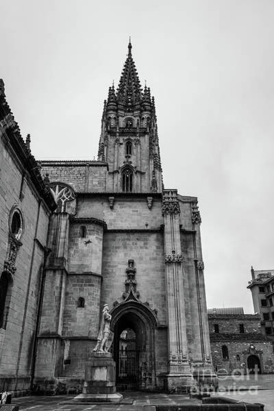 Wall Art - Photograph - Cathedral by Ric Schafer