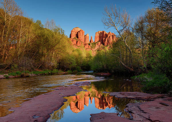 Photograph - Cathedral Rock Reflection by Michael Blanchette