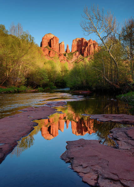 Photograph - Cathedral Rock Reflection Vertical by Michael Blanchette