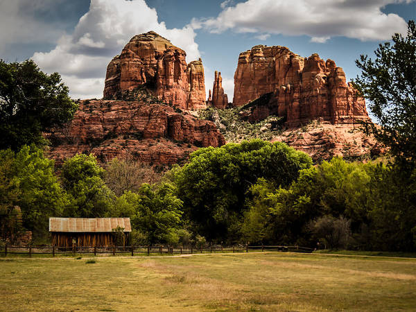 Photograph - Cathedral Rock by Terry Ann Morris