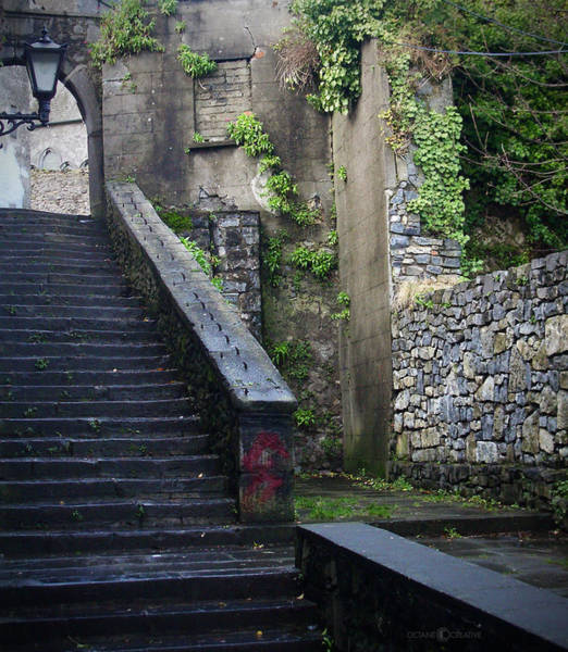 Photograph - Cathedral Stairs by Tim Nyberg