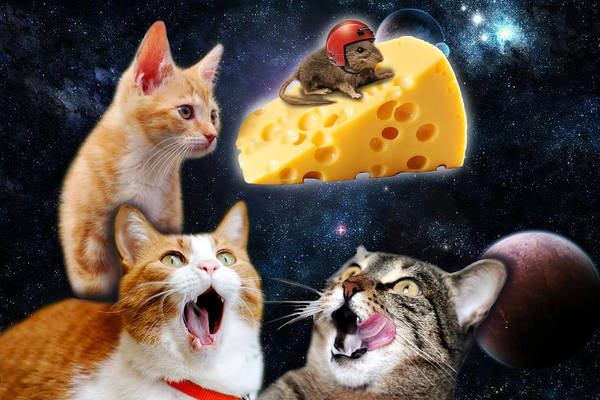 Little Planet Digital Art - Cats And The Mouse On The Cheese by Johnnie Art
