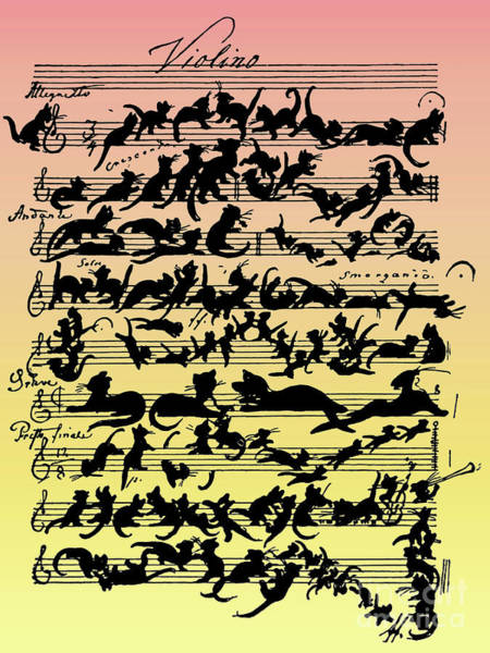 Pussycat Drawing - Cats  Cat Violin Score by Moritz von Schwind