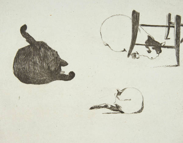 Relief - Cats by Edouard Manet