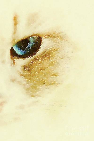 Pussy Painting - Cats Eye By Mb by Mary Bassett