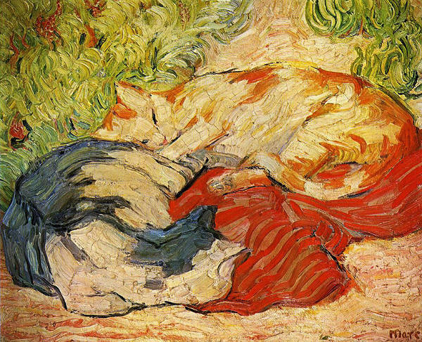 The Blue Rider Wall Art - Painting - Cats by Franz Marc