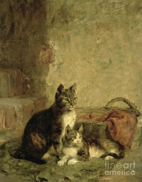 Wall Art - Painting - Cats by Julius Adam