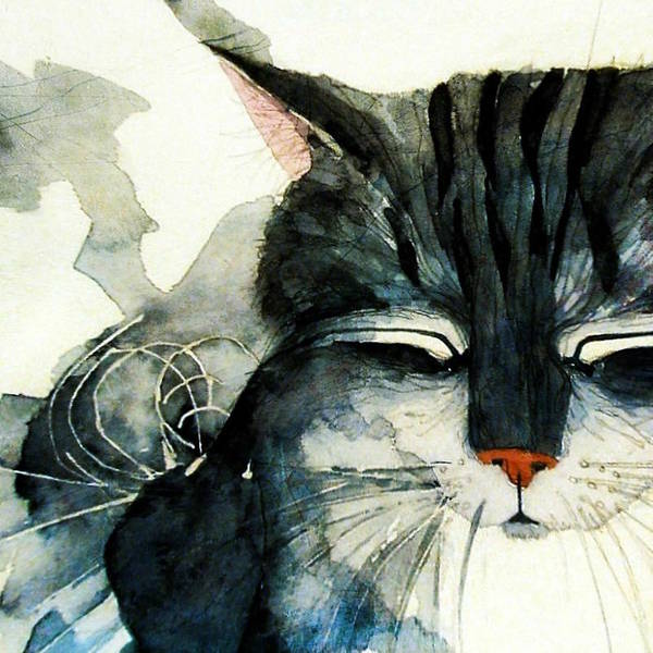 Kitten Wall Art - Painting - Cats Whiskers by Paul Lovering