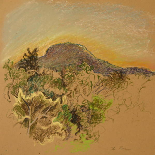 Catskill Drawing - Catskill Mountain High by Bonnie See