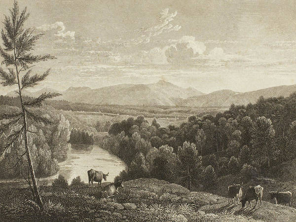 Grass Drawing - Catskill Mountains by Asher Brown Durand