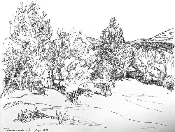 Catskill Drawing - Catskill Mountains Scene by Bonnie See