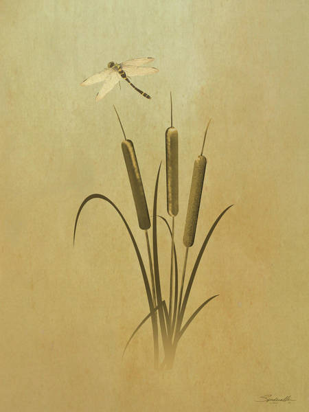 Wall Art - Digital Art - Cattails And Dragonfly by M Spadecaller